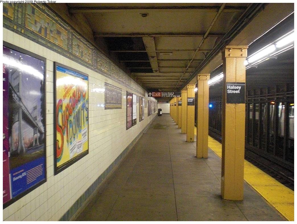 (314k, 1044x788)<br><b>Country:</b> United States<br><b>City:</b> New York<br><b>System:</b> New York City Transit<br><b>Line:</b> BMT Canarsie Line<br><b>Location:</b> Halsey Street <br><b>Photo by:</b> Roberto C. Tobar<br><b>Date:</b> 11/14/2009<br><b>Viewed (this week/total):</b> 4 / 1154