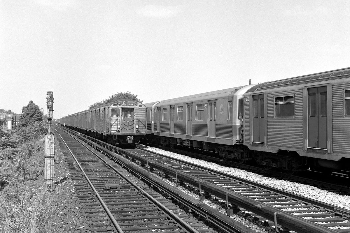 (234k, 1024x709)<br><b>Country:</b> United States<br><b>City:</b> New York<br><b>System:</b> New York City Transit<br><b>Line:</b> BMT Brighton Line<br><b>Location:</b> Avenue U <br><b>Route:</b> D<br><b>Car:</b> R-42 (St. Louis, 1969-1970)  4809 <br><b>Collection of:</b> George Conrad Collection<br><b>Date:</b> 9/11/1969<br><b>Notes:</b> With R32 3470<br><b>Viewed (this week/total):</b> 1 / 2120