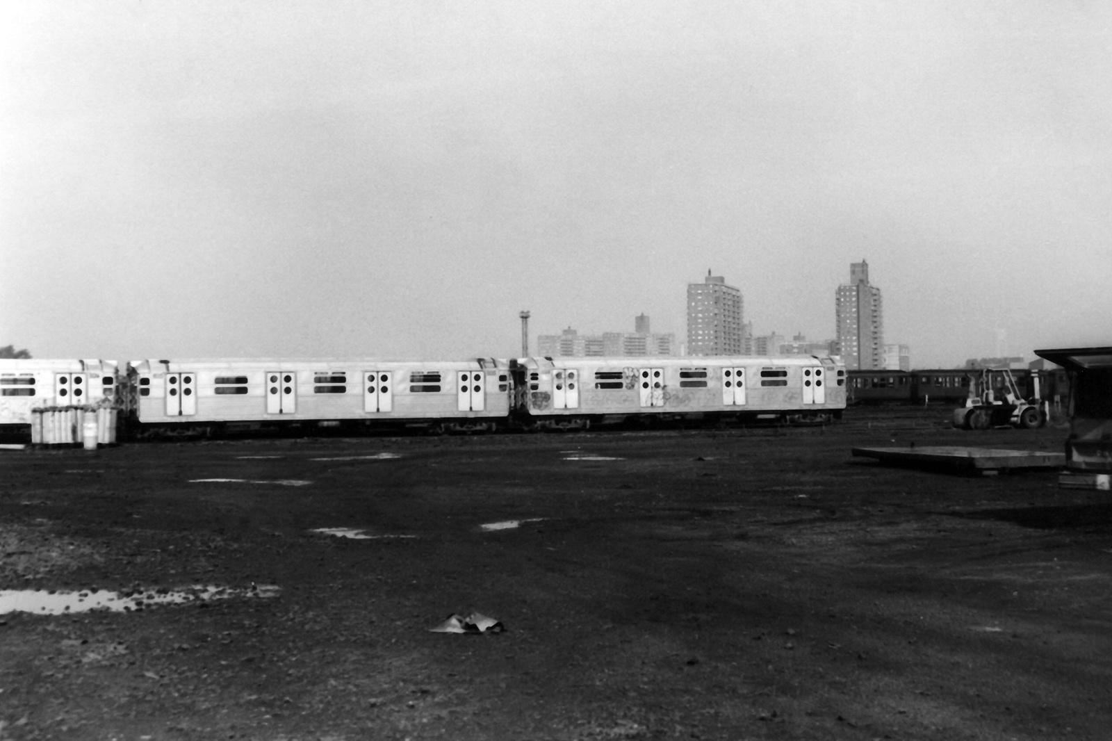 (367k, 1600x1066)<br><b>Country:</b> United States<br><b>City:</b> New York<br><b>System:</b> New York City Transit<br><b>Location:</b> Coney Island Yard<br><b>Car:</b> R-11 (Budd, 1949)  <br><b>Collection of:</b> Nicholas Fabrizio<br><b>Viewed (this week/total):</b> 2 / 269