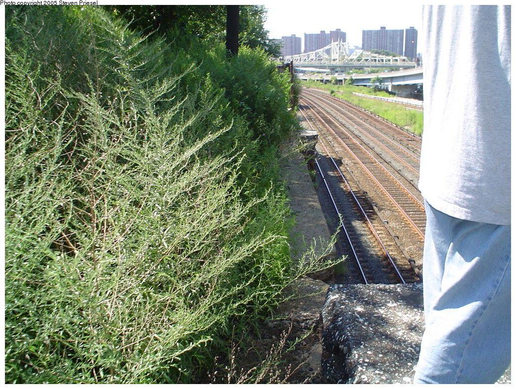(283k, 1044x788)<br><b>Country:</b> United States<br><b>City:</b> New York<br><b>System:</b> New York City Transit<br><b>Line:</b> 9th Avenue El<br><b>Location:</b> Sedgwick Avenue <br><b>Photo by:</b> Steven Priesel<br><b>Date:</b> 8/8/2004<br><b>Notes:</b> View of the MNRR tracks.<br><b>Viewed (this week/total):</b> 5 / 7358
