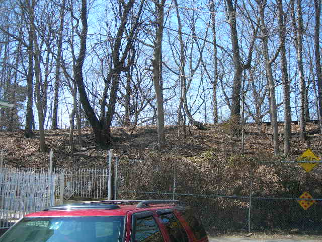 (92k, 640x480)<br><b>Country:</b> United States<br><b>City:</b> New York<br><b>System:</b> Long Island Rail Road<br><b>Line:</b> LIRR Rockaway<br><b>Location:</b> Brooklyn Manor <br><b>Photo by:</b> Joe Grillo<br><b>Date:</b> 3/23/2009<br><b>Notes:</b> View from 88th Ave looking west at abandoned LIRR rockaway line, just south of Brooklyn Manor station location.<br><b>Viewed (this week/total):</b> 1 / 1274