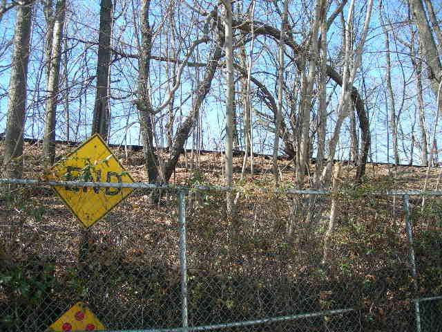 (90k, 640x480)<br><b>Country:</b> United States<br><b>City:</b> New York<br><b>System:</b> Long Island Rail Road<br><b>Line:</b> LIRR Rockaway<br><b>Location:</b> Brooklyn Manor <br><b>Photo by:</b> Joe Grillo<br><b>Date:</b> 3/23/2009<br><b>Notes:</b> View from 88th Ave looking west at abandoned LIRR rockaway line, just south of Brooklyn Manor station location.<br><b>Viewed (this week/total):</b> 7 / 1015