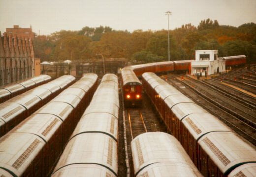 (41k, 520x359)<br><b>Country:</b> United States<br><b>City:</b> New York<br><b>System:</b> New York City Transit<br><b>Location:</b> Corona Yard<br><b>Car:</b> R-36 World's Fair (St. Louis, 1963-64)  <br><b>Photo by:</b> Jason R. DeCesare<br><b>Date:</b> 1995<br><b>Viewed (this week/total):</b> 0 / 4234