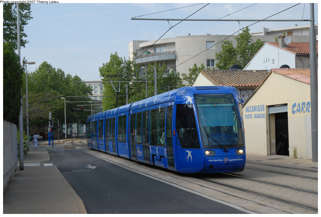 (208k, 1044x705)<br><b>Country:</b> France<br><b>City:</b> Montpellier<br><b>System:</b> Transports de l'Agglomération de Montpellier (TAM)<br><b>Car:</b> Alstom/Citadis  <br><b>Photo by:</b> Thierry Leleu<br><b>Date:</b> 4/25/2007<br><b>Viewed (this week/total):</b> 0 / 610