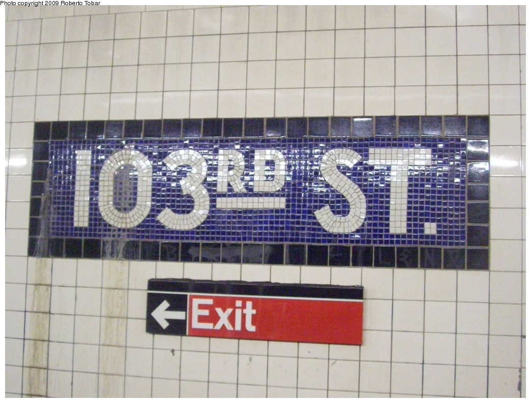 (206k, 1044x791)<br><b>Country:</b> United States<br><b>City:</b> New York<br><b>System:</b> New York City Transit<br><b>Line:</b> IND 8th Avenue Line<br><b>Location:</b> 103rd Street <br><b>Photo by:</b> Roberto C. Tobar<br><b>Date:</b> 1/30/2009<br><b>Notes:</b> Wall tile<br><b>Viewed (this week/total):</b> 5 / 1633