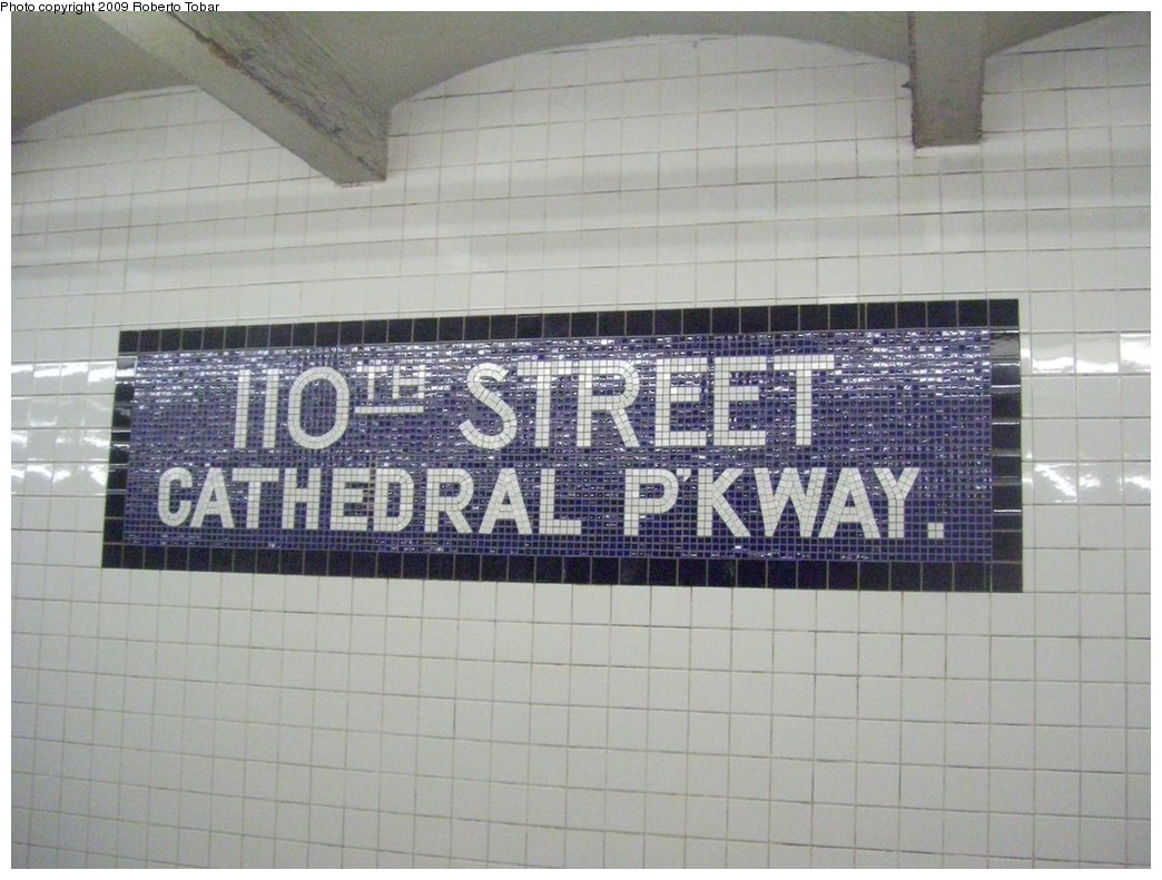 (203k, 1044x791)<br><b>Country:</b> United States<br><b>City:</b> New York<br><b>System:</b> New York City Transit<br><b>Line:</b> IND 8th Avenue Line<br><b>Location:</b> 110th Street/Cathedral Parkway <br><b>Photo by:</b> Roberto C. Tobar<br><b>Date:</b> 1/30/2009<br><b>Notes:</b> Wall tile<br><b>Viewed (this week/total):</b> 3 / 1328