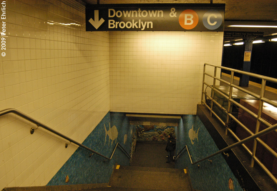(209k, 930x641)<br><b>Country:</b> United States<br><b>City:</b> New York<br><b>System:</b> New York City Transit<br><b>Line:</b> IND 8th Avenue Line<br><b>Location:</b> 81st Street/Museum of Natural History <br><b>Photo by:</b> Peter Ehrlich<br><b>Date:</b> 3/4/2009<br><b>Notes:</b> Stairway from upper to lower level.<br><b>Viewed (this week/total):</b> 1 / 9397