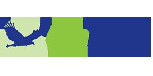 Cityraven logo