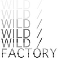 Logo twf vimeo1