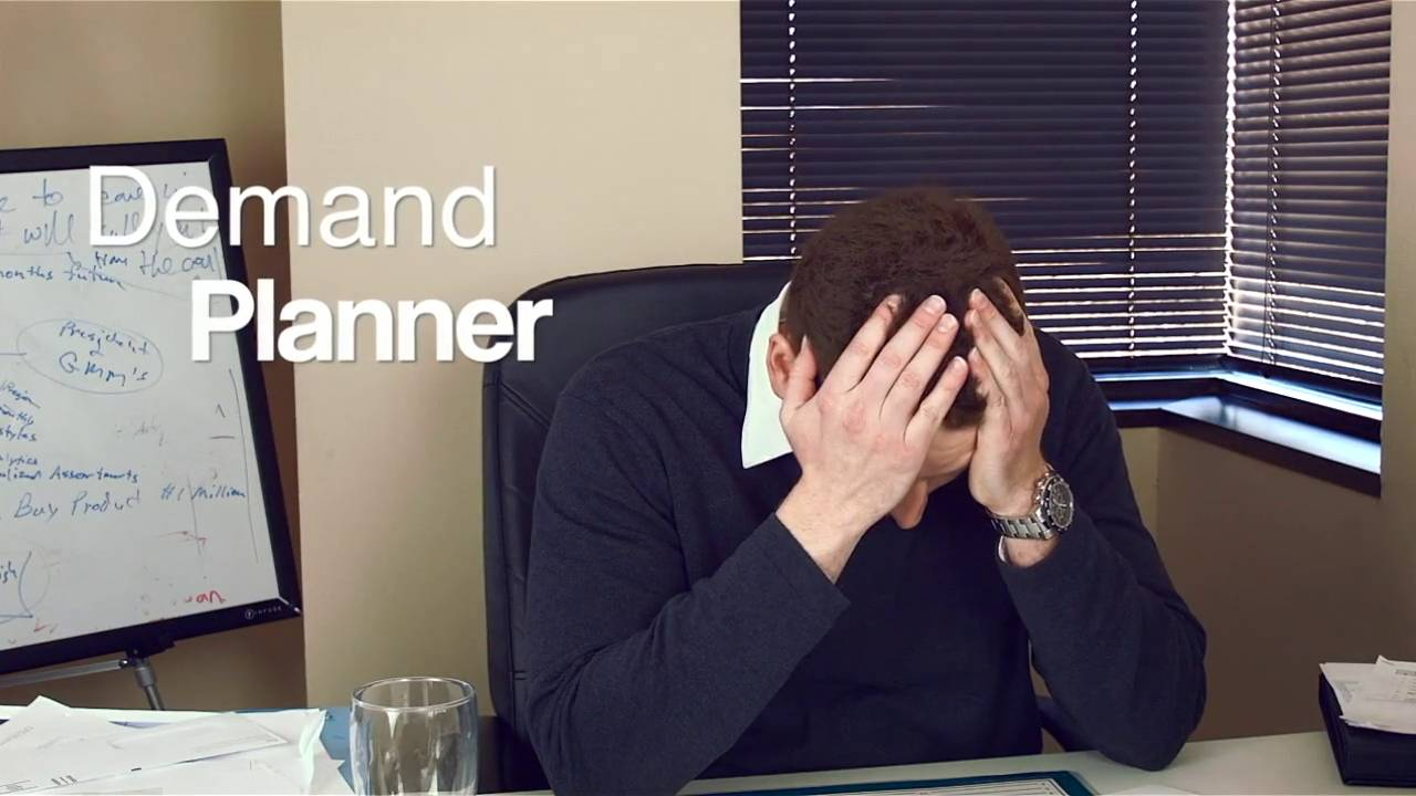 The Demand Planner