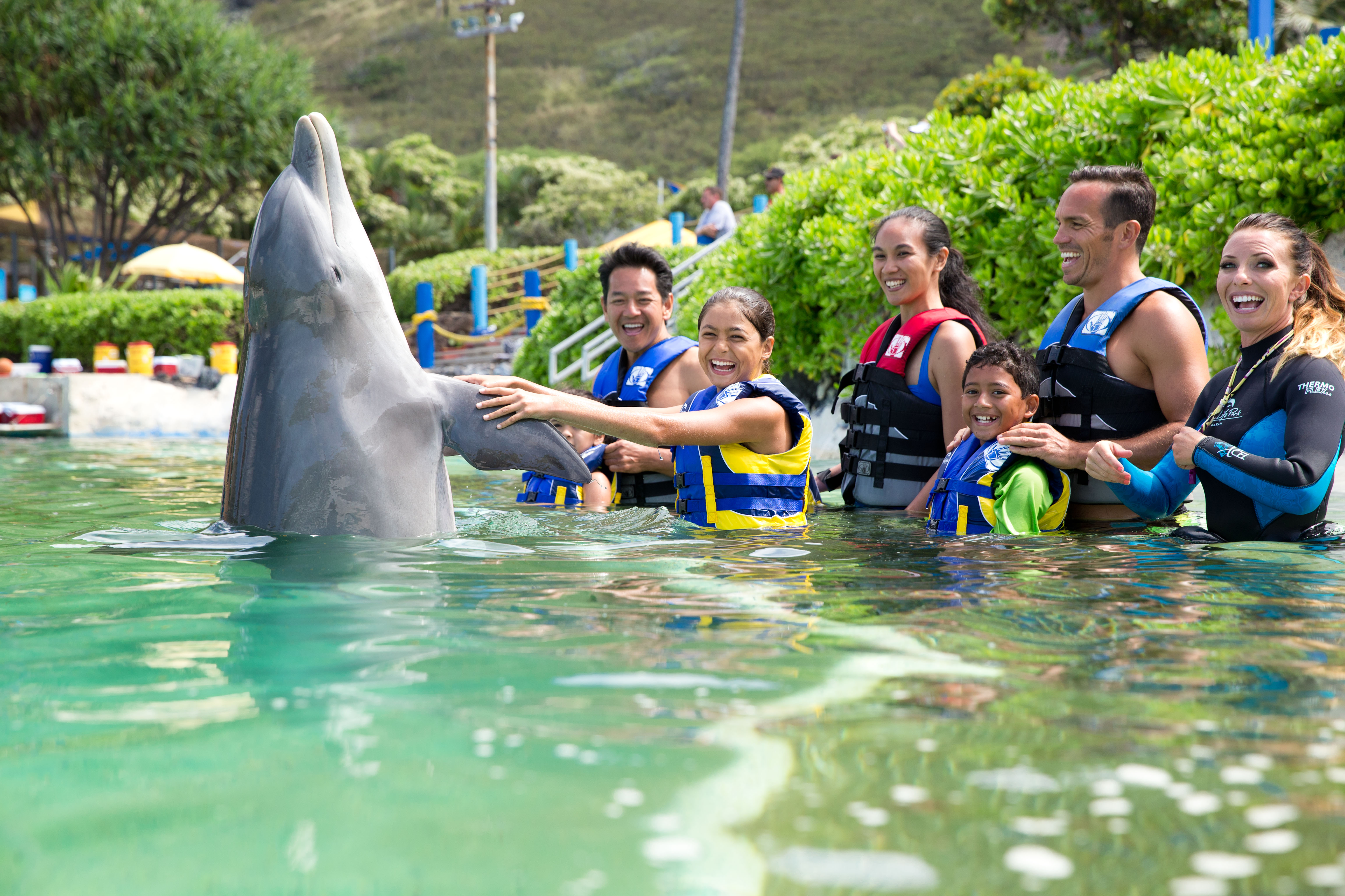Product Dolphin Encounter - Age 3 and Older