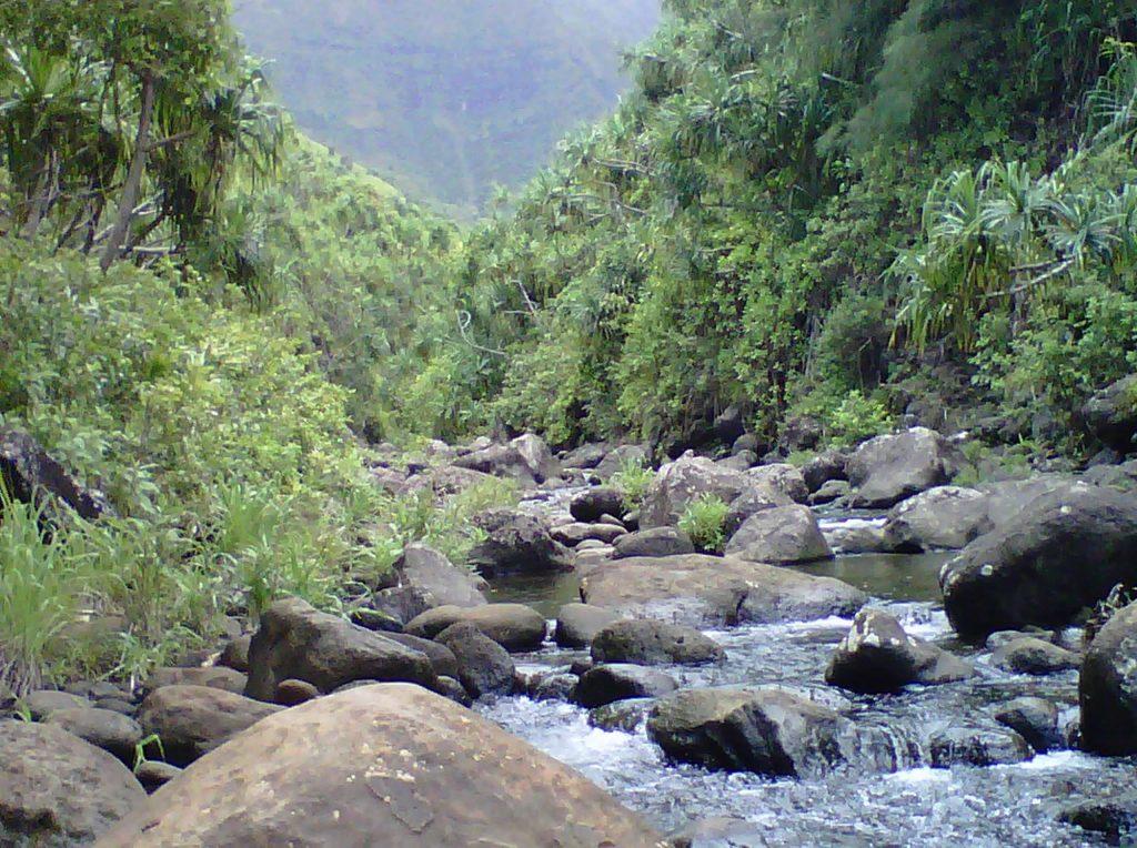 Kalalau Trail/Kauai - The Hawaiian Bucket List