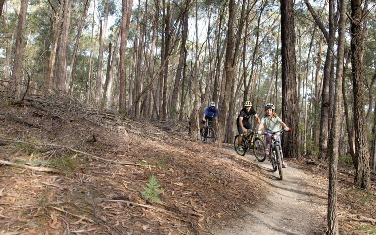 Mountain bike Tathra.