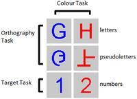 Figure 1. Example stimuli for the three tasks performed. Participants were asked to detect numbers 1 and 2 presented among letters and pseudoletters for the Target task, to discriminate between letters and pseudoletters for the Orthography task, to discriminate between red and blue colored stimuli for the Color task.