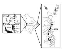 Figure 1: Location of basins containing the sampled palaeosols.Right, exposed basins of the Newark Supergroup. Sampled basins: 1, Durham sub-basin of the Deep River basin (Chatham Group samples from the eastern Durham sub-basin); 2, Hartford basin (New Haven Formation); and 3, Fundy basin (McCoy Brook Formation). Left, part of the Chinle basin with the outcrop pattern of the Chinle Group shown in black. Location of the sample area of the Owl Rock Formation is indicated (4).