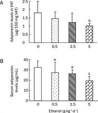 Figure 2: Effects of chronic ethanol treatment on adiponectin levels in VAT (A) and sera (B) of rats. Wistar rats were fed with edible ethanol at doses of 0, 0.5, 2.5, and 5.0 g·kg-1·d-1for 22 weeks. VAT was obtained from epididymal and perirenal fat pads and blood samples were collected. Adiponectin levels in both VAT and sera were measured by ELISA. Values are given as mean±SD (n=12 in the 0 and 0.5 g·kg-1·d-1groups; n=11 in the 2.5 g·kg-1·d-1group; n=10 in the 5.0 g·kg-1·d-1group). bP<0.05, cP<0.01 vs 0 g·kg-1·d-1 group; eP<0.05 vs 5 g·kg-1·d-1 group.