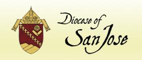 Dsj logo