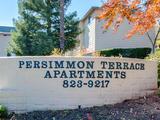 Persimmon_terrace