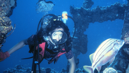 Scuba diving in he Virgin Islands