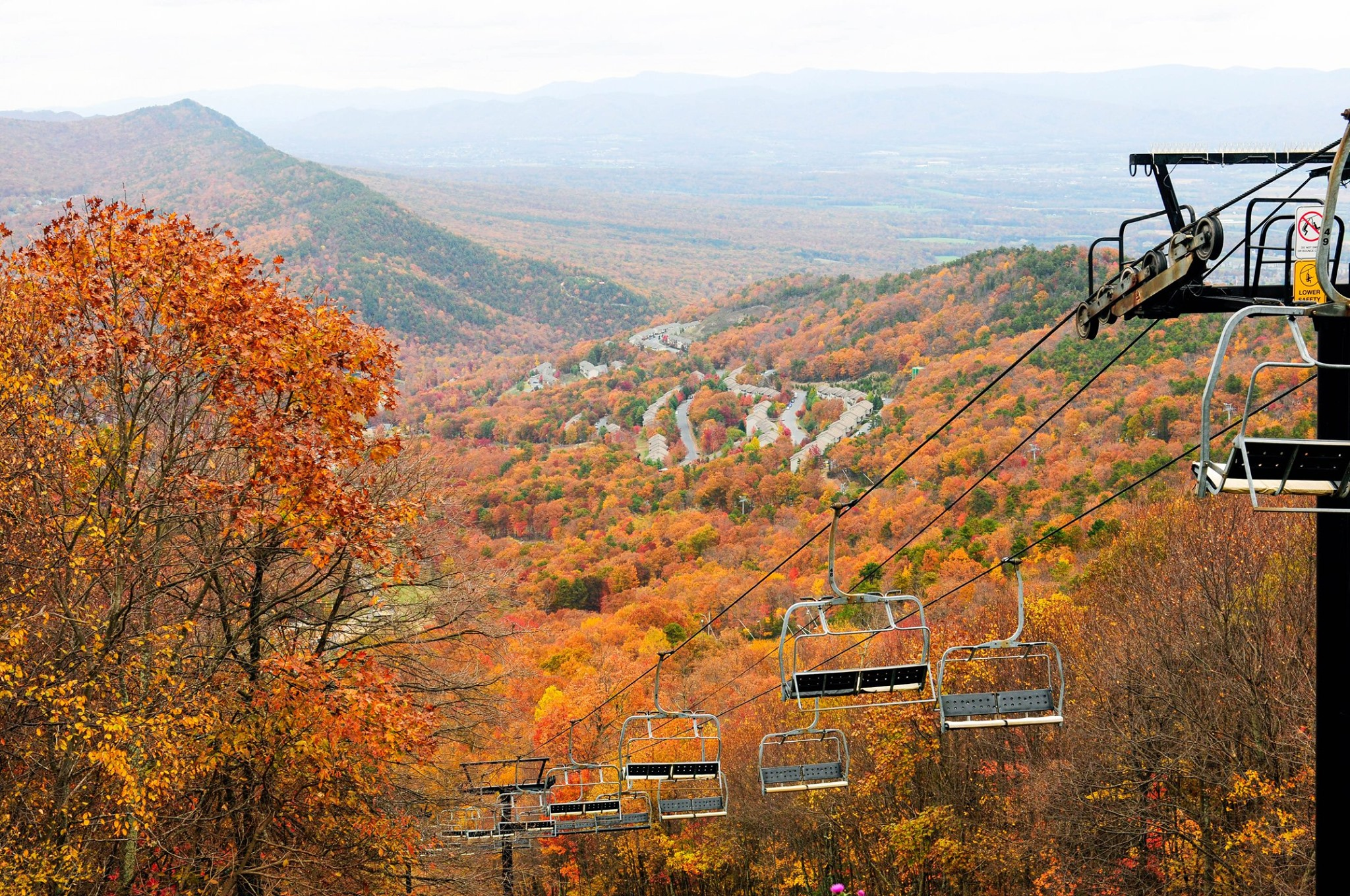 chairlift, foliage