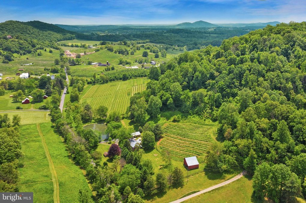 aerial view, farm, vineyard