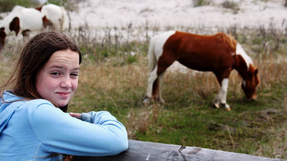 14 Year Old Maryland Girl Adopts Entire Herd Of Assateague Island Ponies