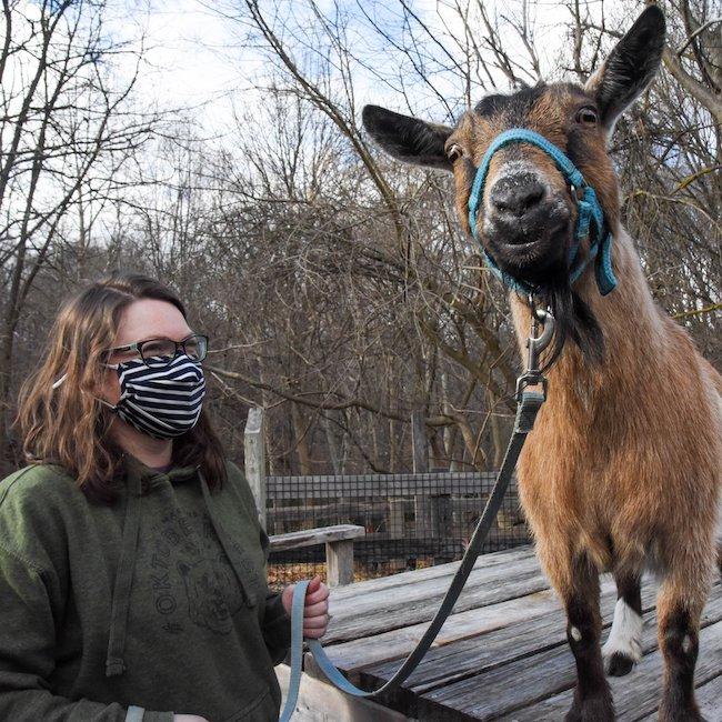 Maryland Zoo goat trek