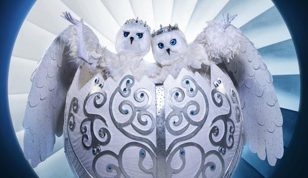 Snow owls costume