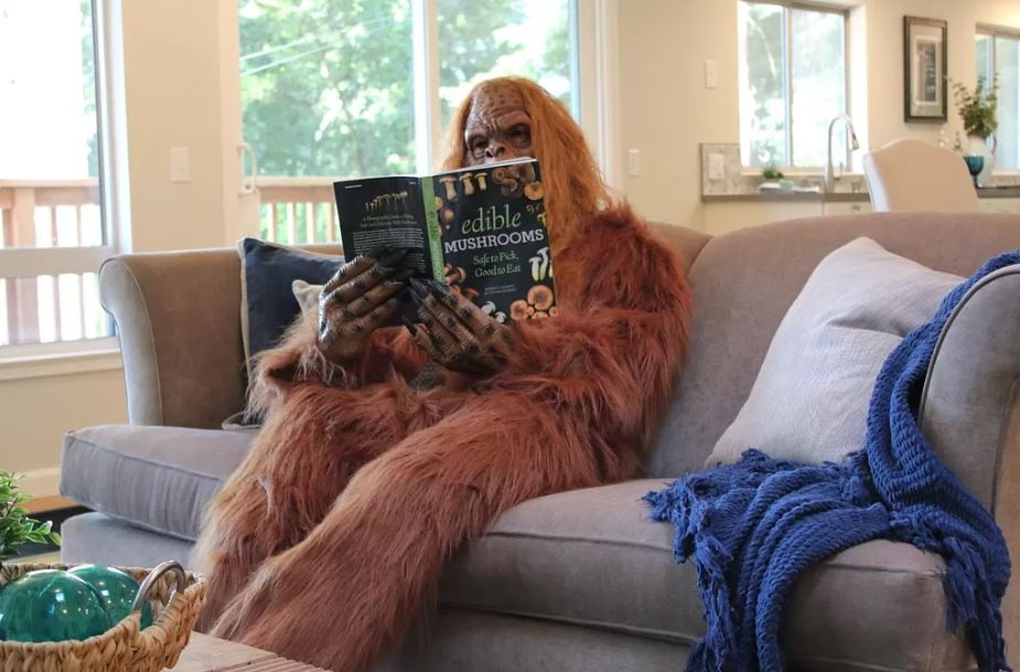 Bigfoot on couch