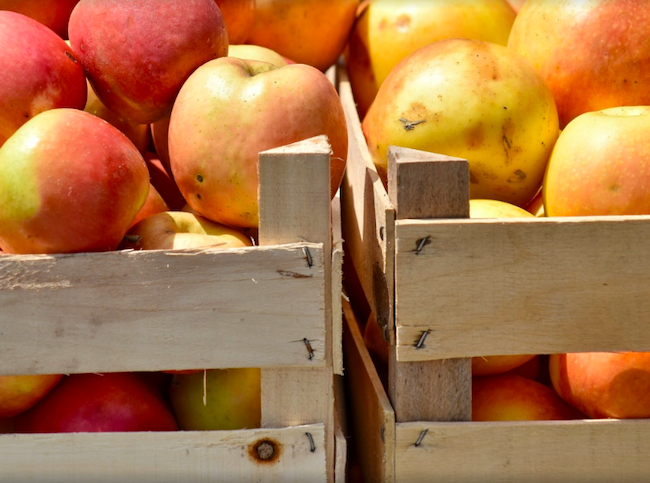 fresh apples at colorado ranch market