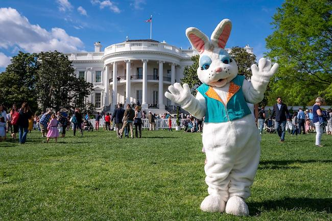 The Easter bunny at the White House Easter Egg Roll 2019, courtesy Tia Dufour
