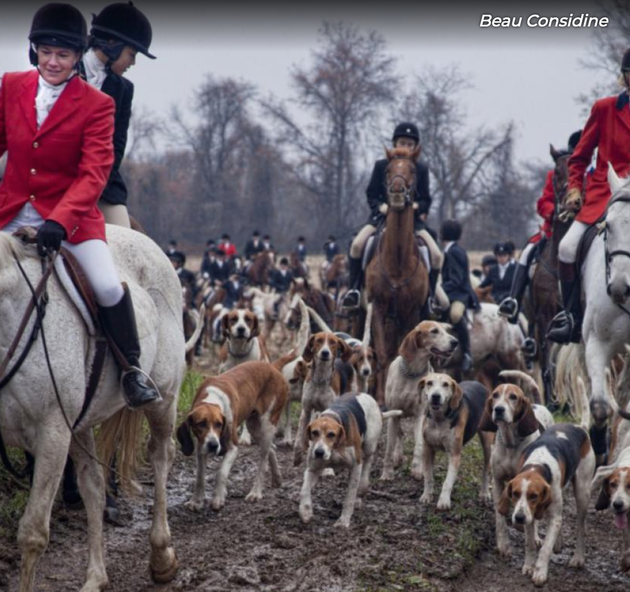 Horses and Hounds