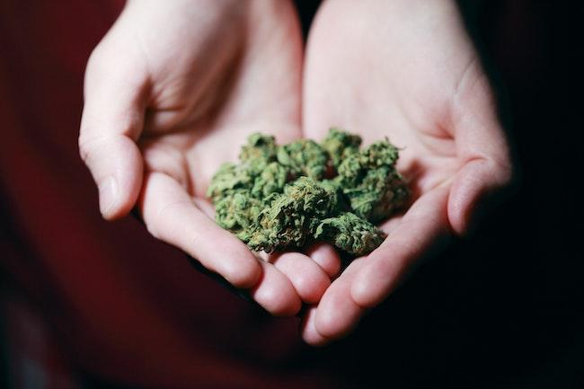 marijuana hands