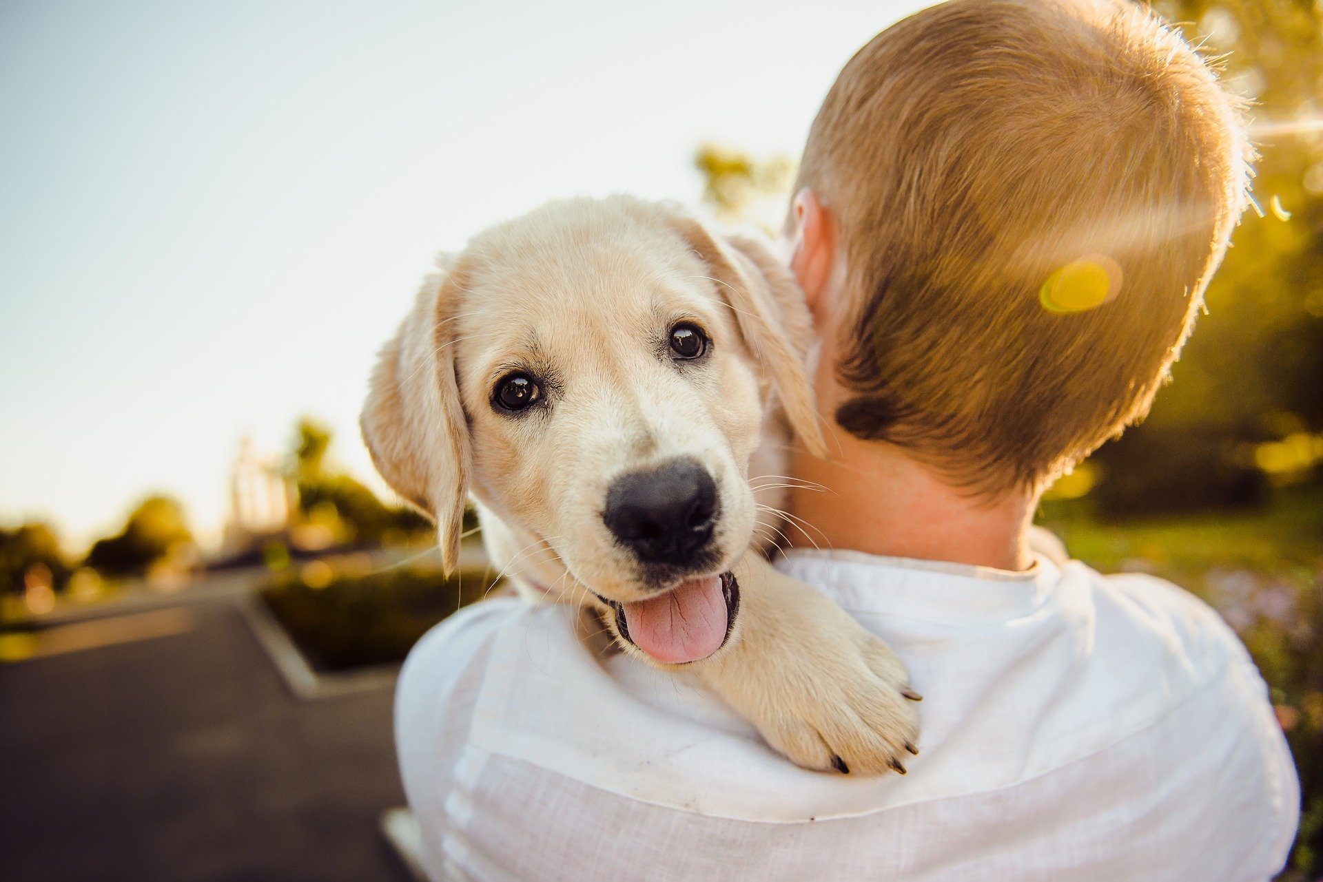 man with puppy