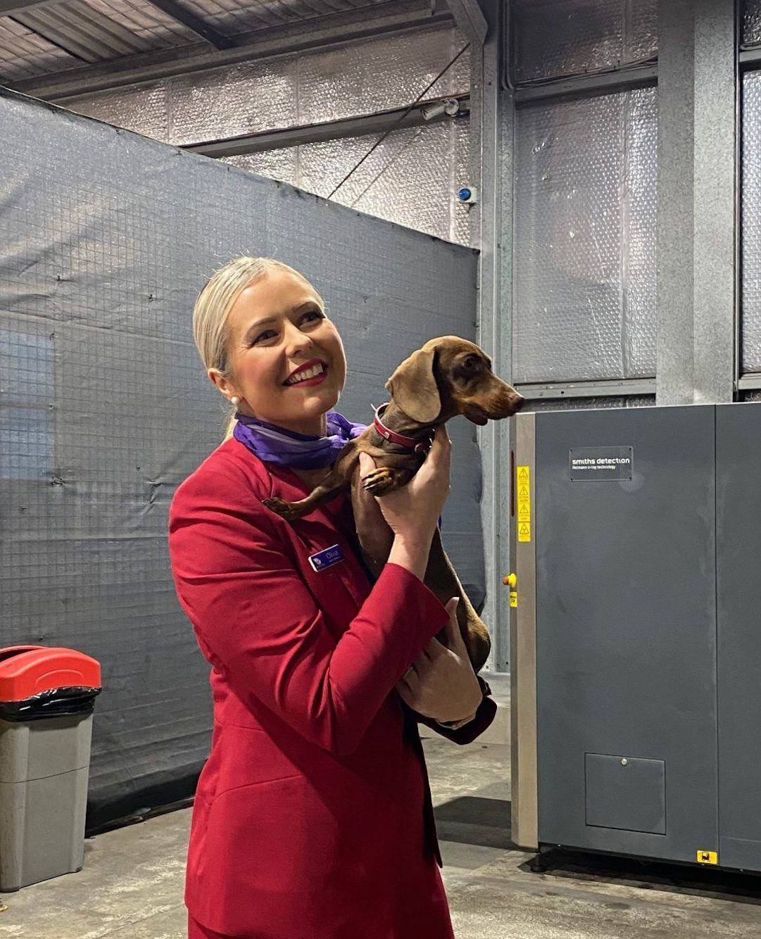 flight attendant holding dog