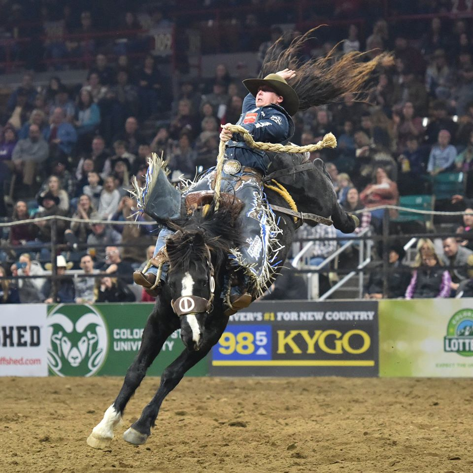national western stock show, things to do in denver