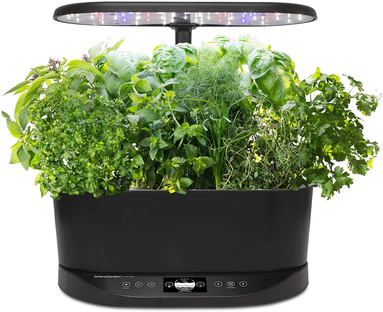 Aerogarden, herb garden