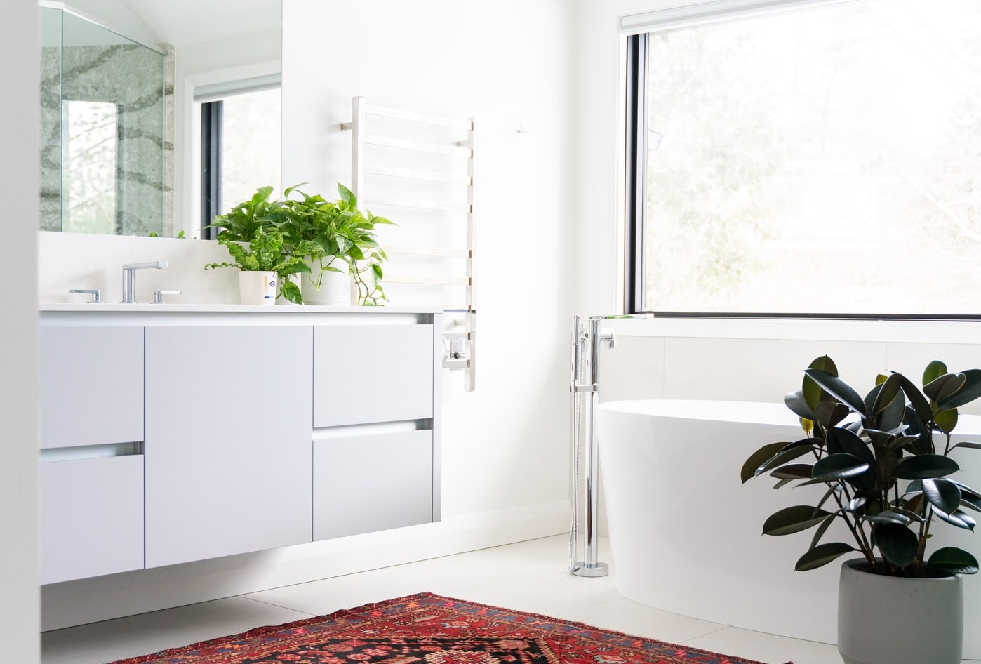 bathroom, plants