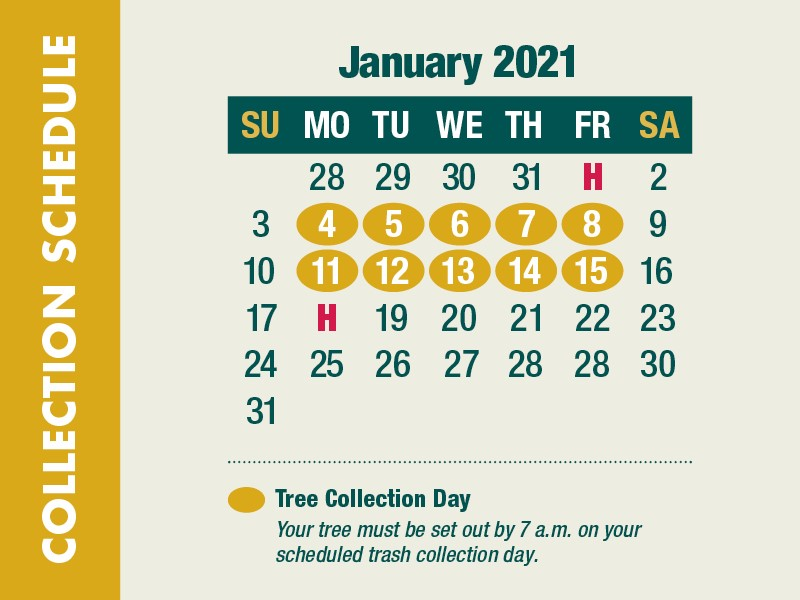 A calendar of information for the Treecycle program.