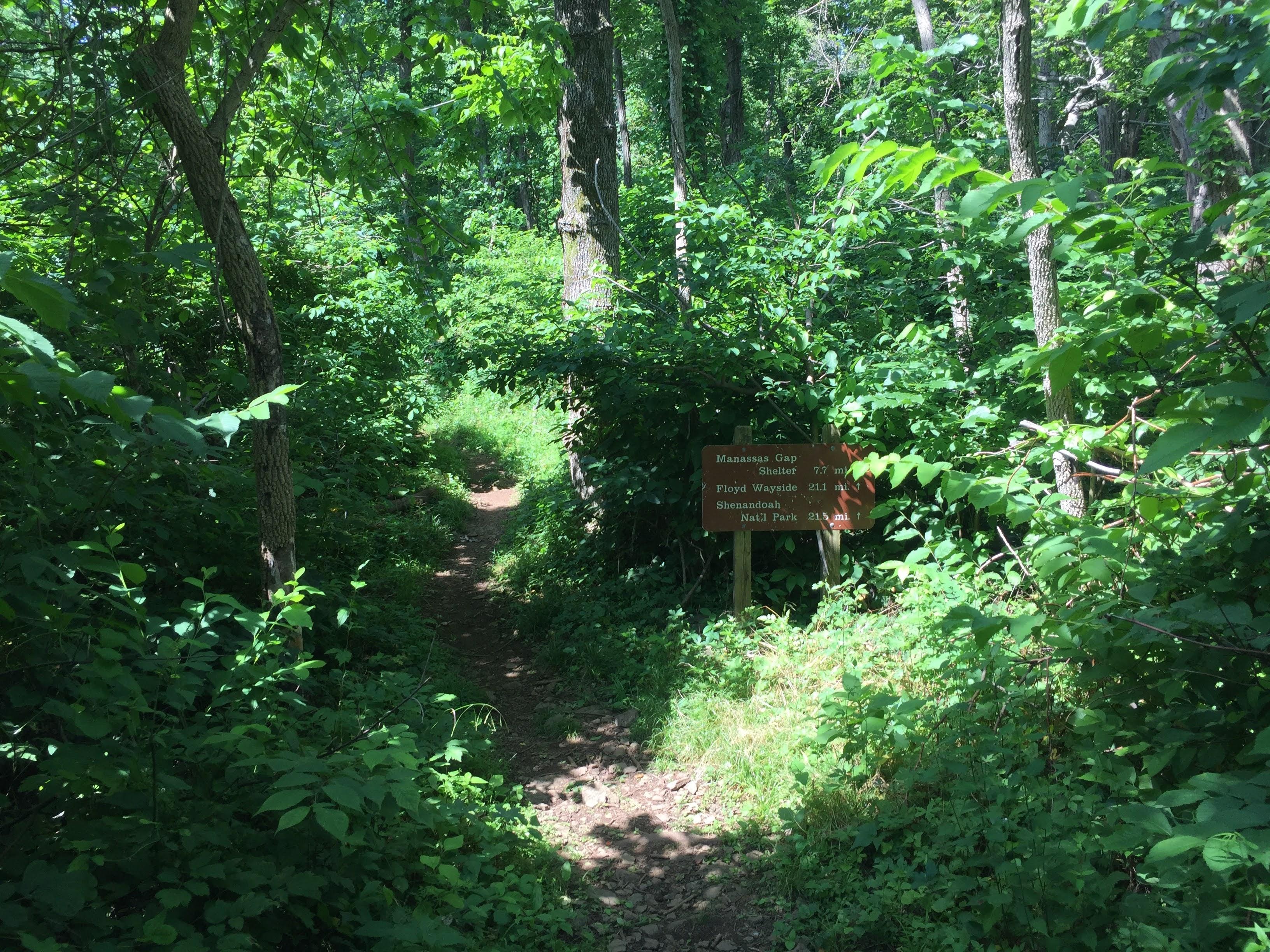 Sky Meadows Appalachian Trail Section