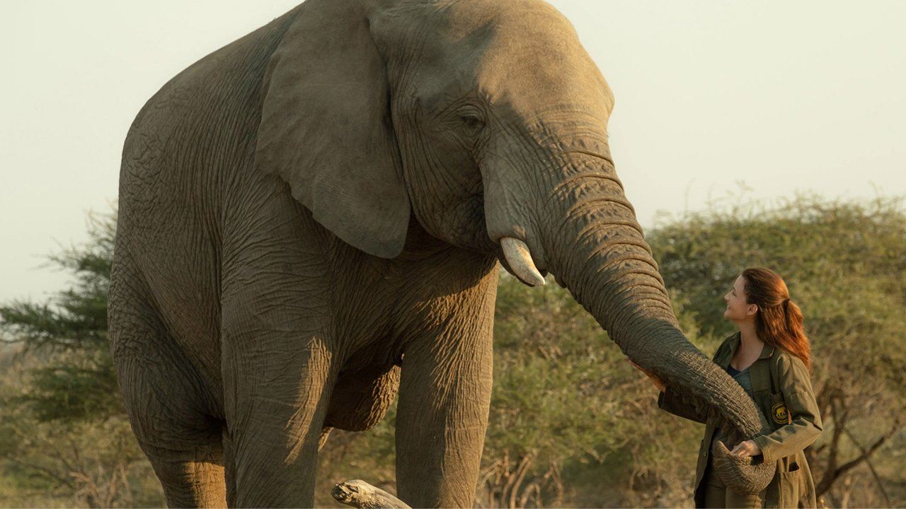 Elephant and Woman