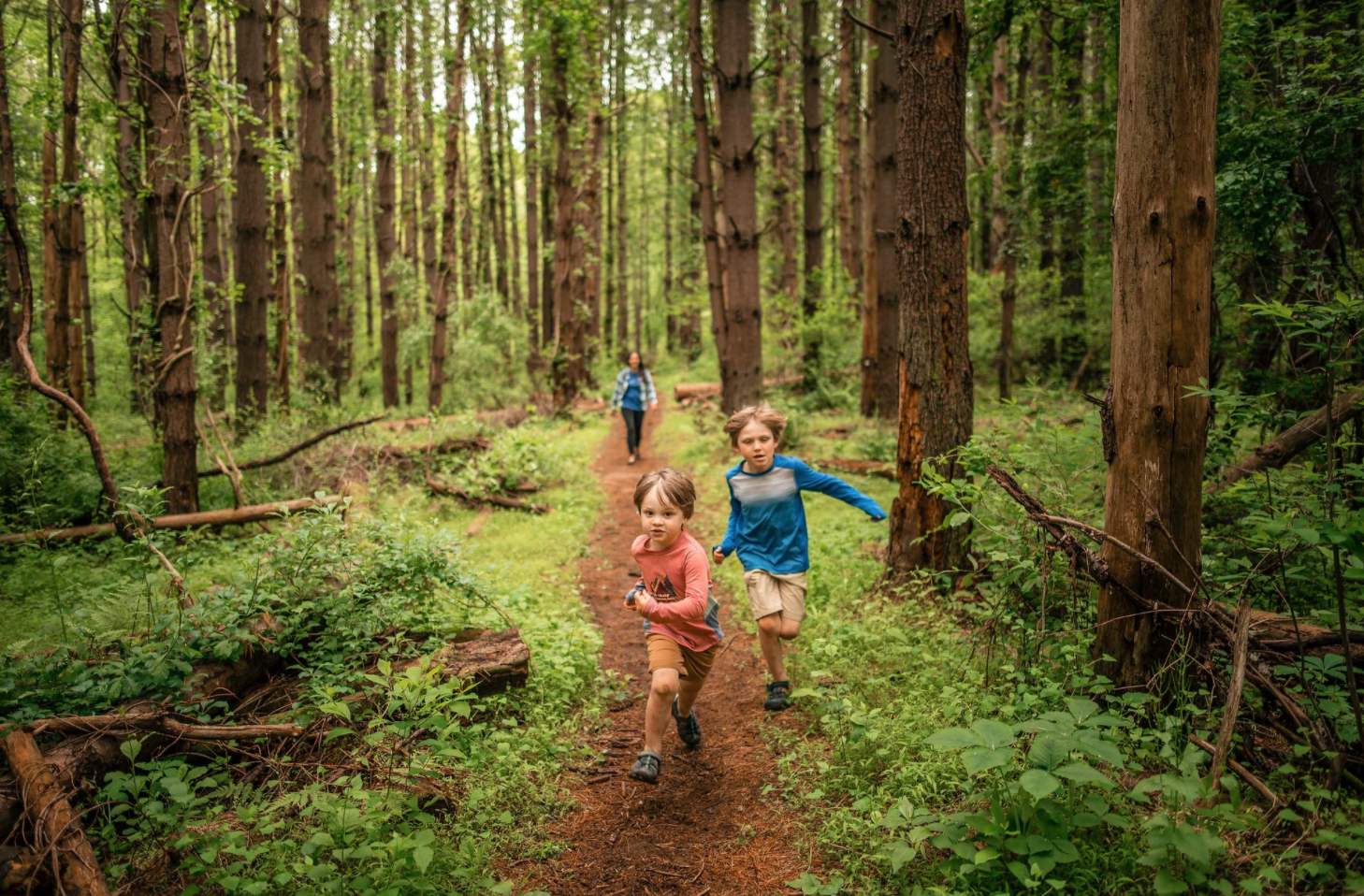 children playing on a trail