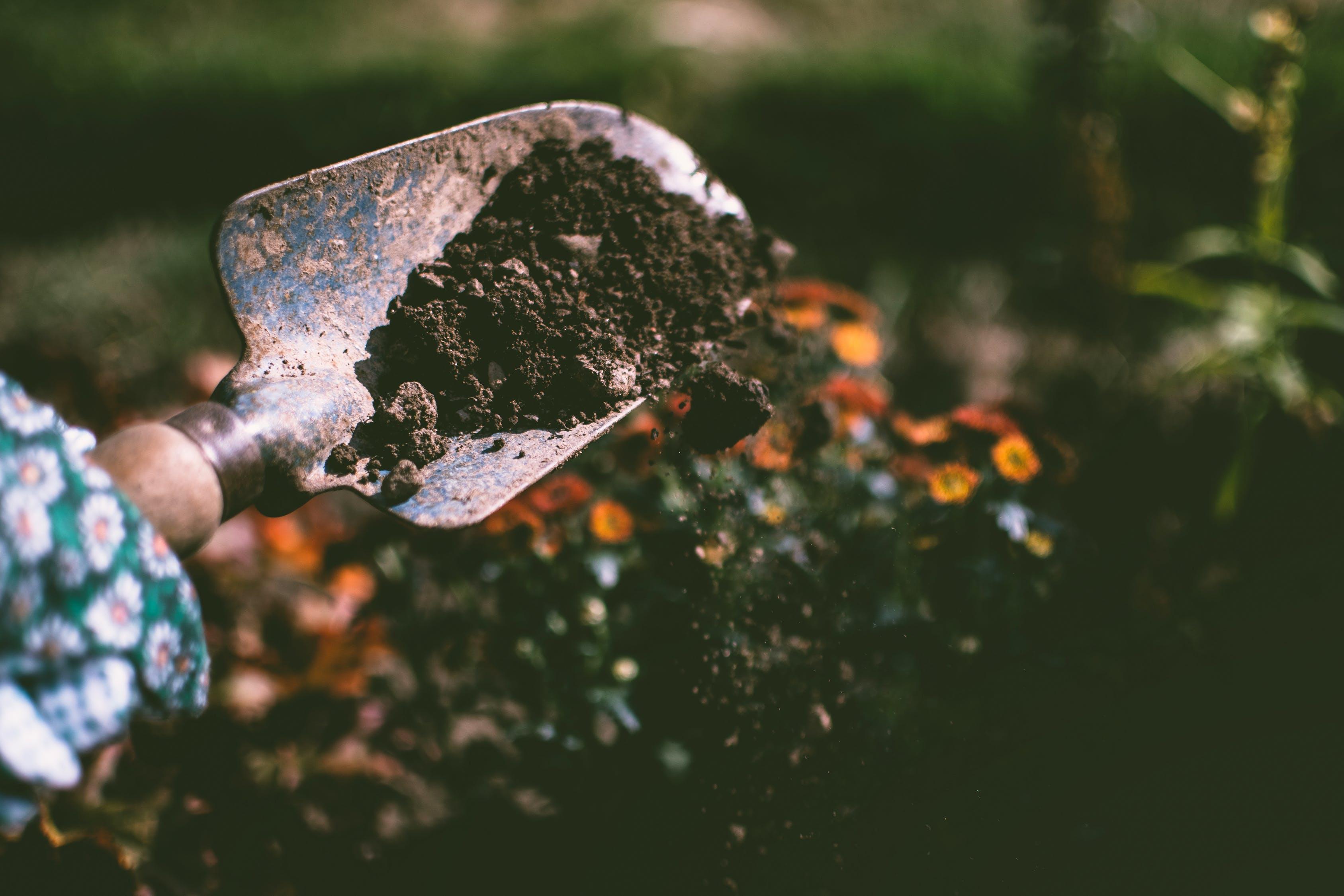 garden soil, dirt