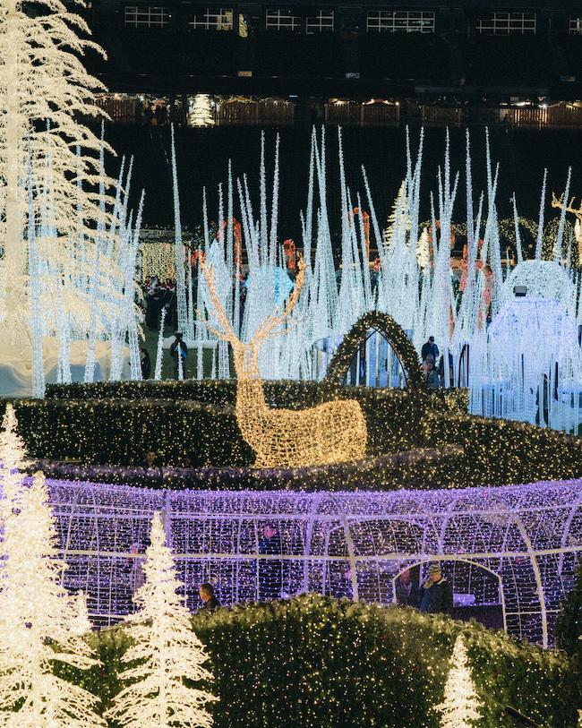 Enchant Christmas Light Display