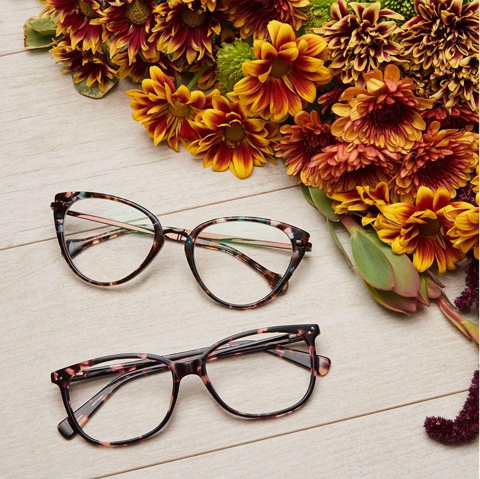 Zenni, glasses