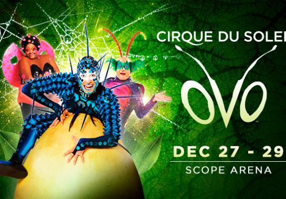 Cirque Du Soleil Ovo Banner