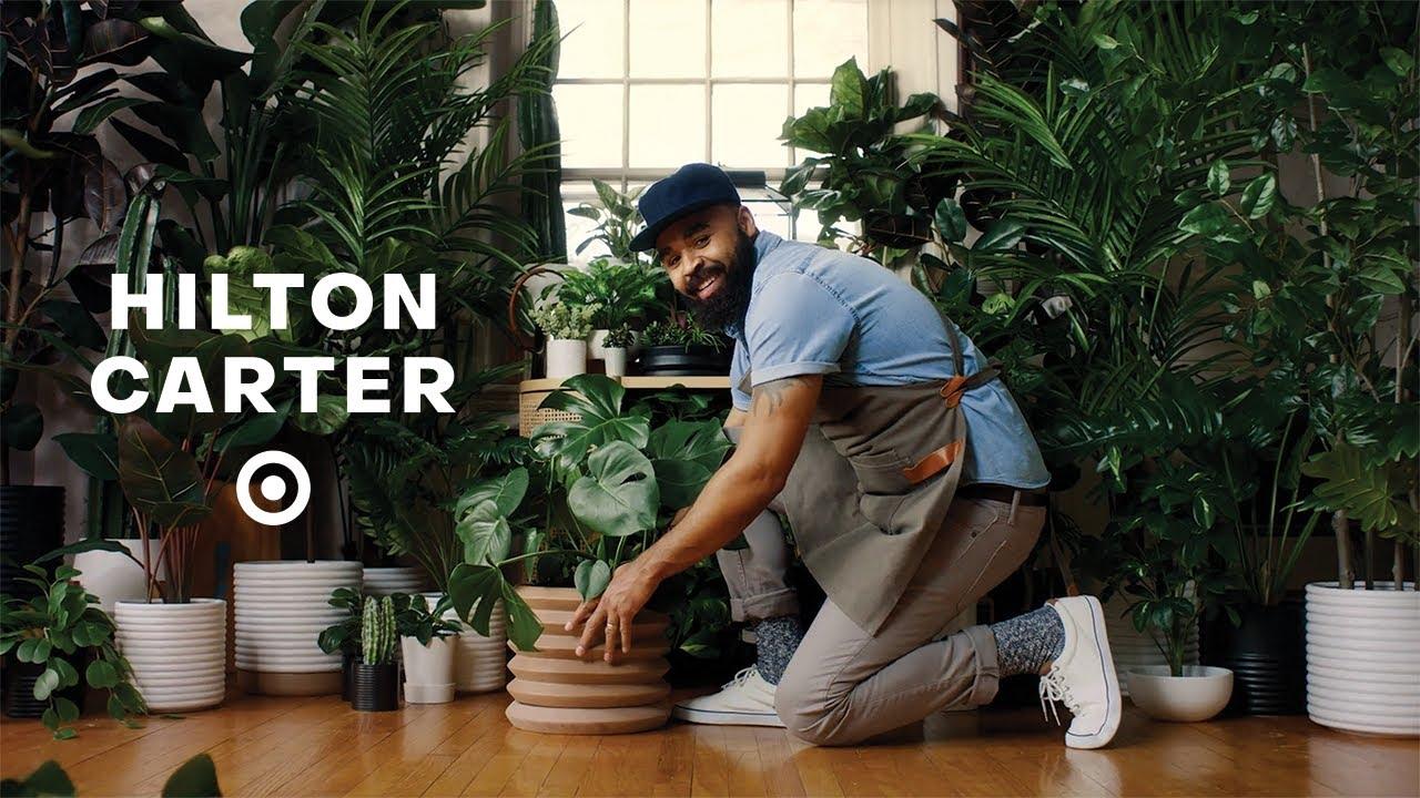 Hilton Carter, plants