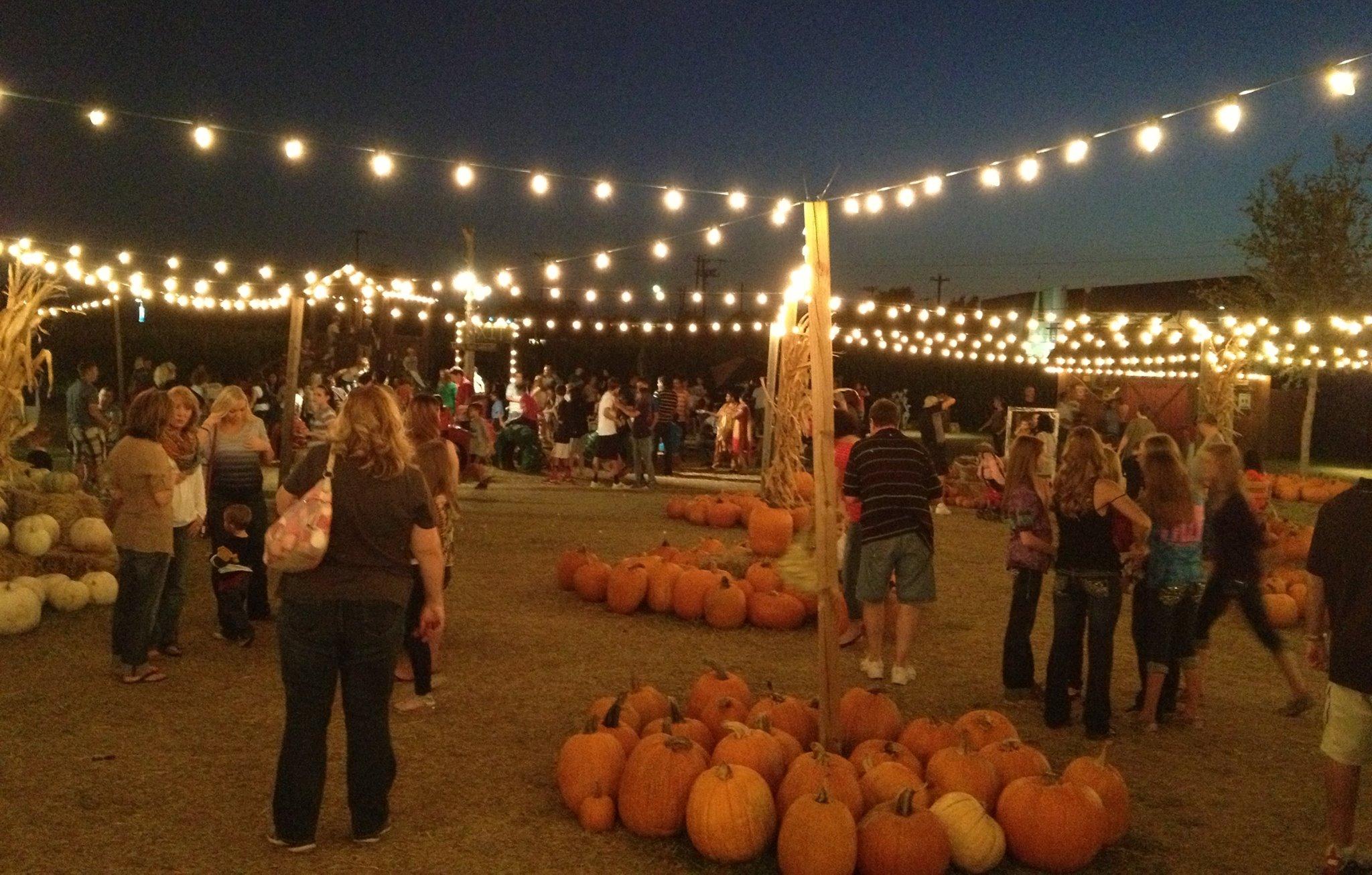 halls pumpkin farm grapevine tx