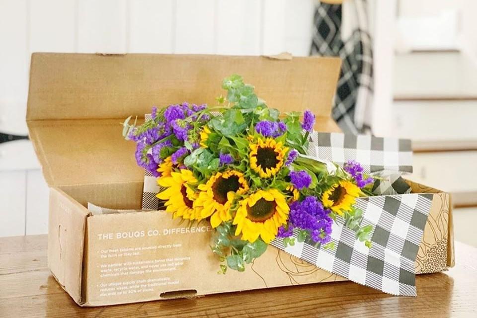 flowers, sunflowers