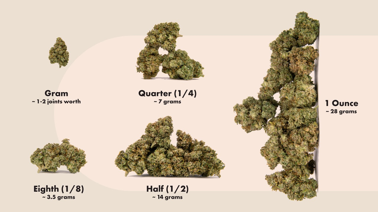 Marijuana Legalized in Virginia Ounce Grams Weight Conversons Infographic